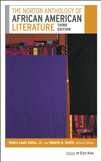 The Norton Anthology of African American Literature 3rd Ed.